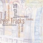 Career Tracks